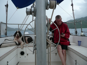 Tom in his element - sailing while emailing but surrounded by Dexter and Tootsie (or two dogs if that's too vague).
